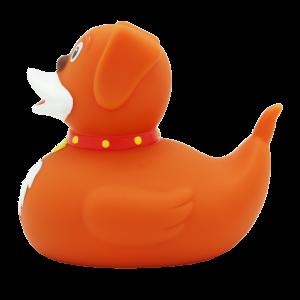 duckstoresanmarinocane
