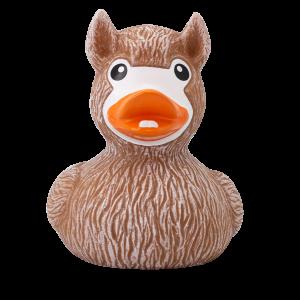 duck store san marino lama 1