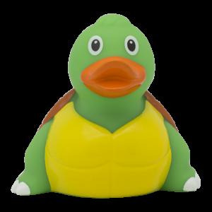 duck store san marino tartaruga 1