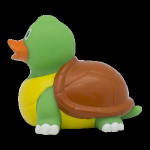 duck store san marino tartaruga 2